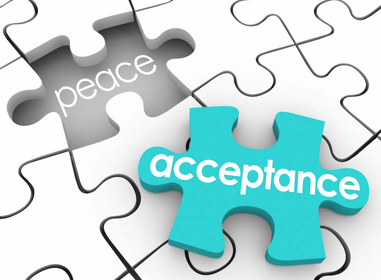 Acceptance Puzzle Piece Complete Inner Peace Admit Fault Shortcoming