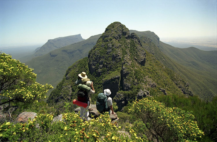 Hiker look towards Bluff Knoll on The Stirling Range ridge top walk near Albany, Western Australia