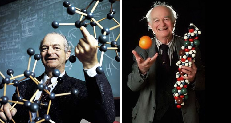 Dr. Linus Pauling The Man Who Started the Vitamin C Craze