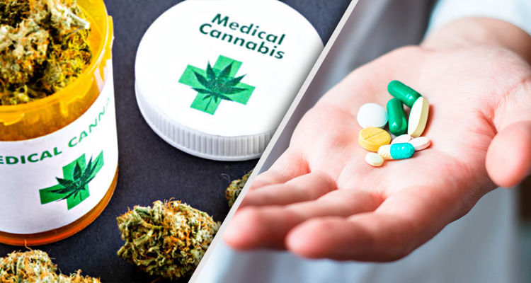 medical marijuana and chemical painkillers