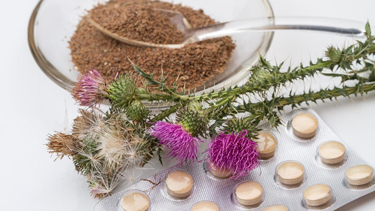 Does Milk Thistle Work