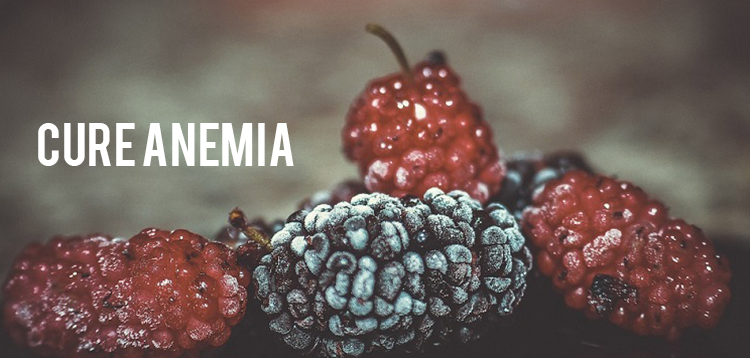 Cure Anemia