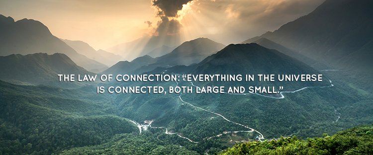 "THE LAW OF CONNECTION: ""EVERYTHING IN THE UNIVERSE IS CONNECTED, BOTH LARGE AND SMALL."""