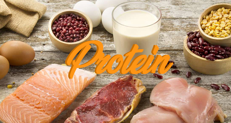 Post-workout meals: Protein