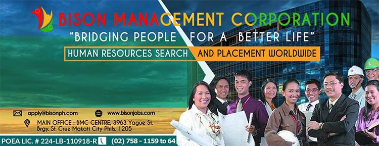 BISON MANAGEMENT CORPORATION